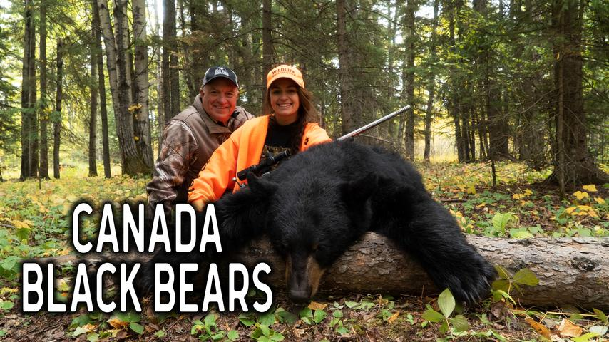 Canada Black Bears with Great Grey Outfitters | The High Road with Keith Warren
