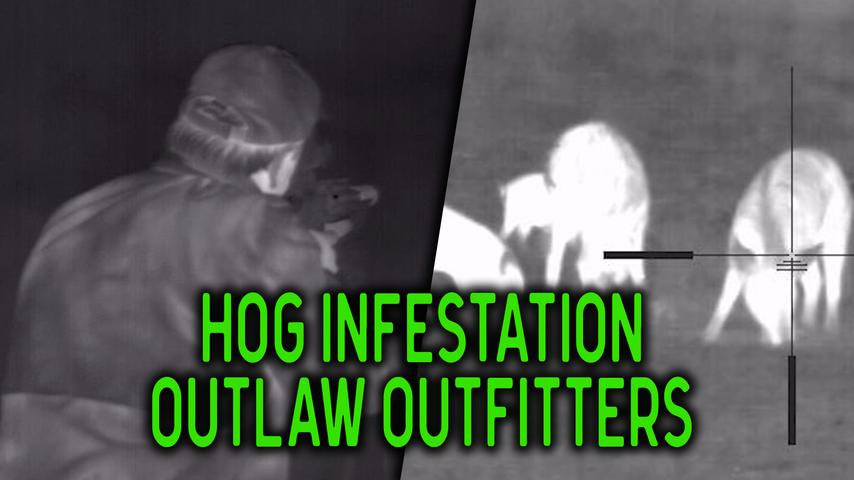 Thermal Hog Hunting Annihilation with Outlaw Outfitters